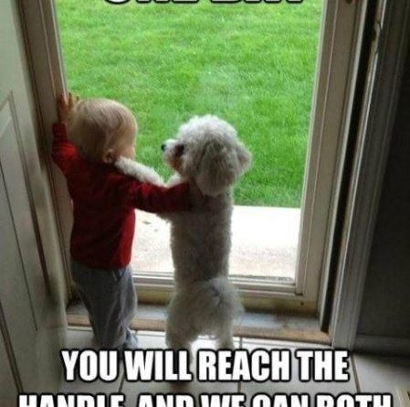 Just Be Patient - Dog humor