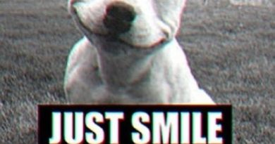 Just Smile - Dog humor