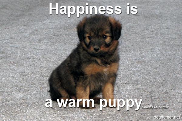 Happiness Is... - Dog Humor