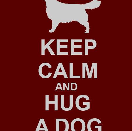 Keep Calm And Hug A Dog - Dog humor