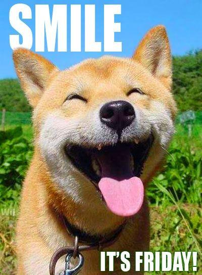 Smile! It's Friday – Dog Humor