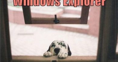 Windows Explorer - Dog humor