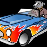 Dog in a Car - Dog humor