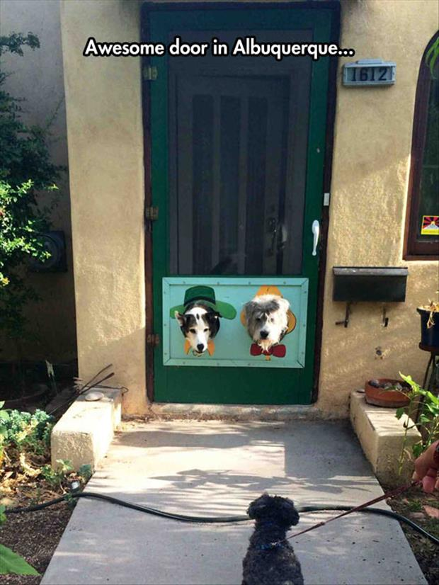 Awesome Dog Door - Dog humor