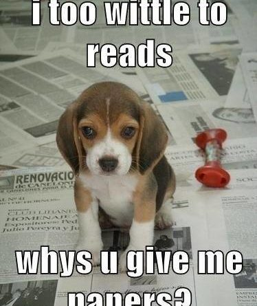I Too Wittle To Reads - Dog humor