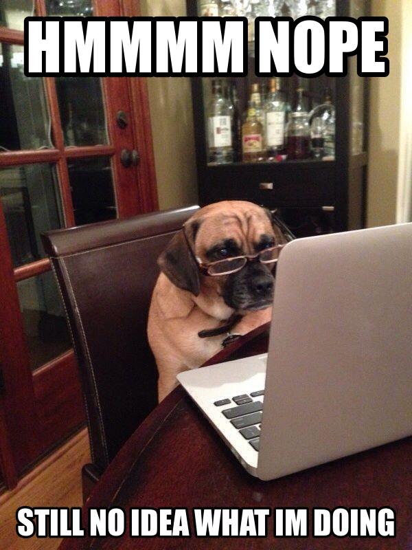 Hmmmm... Nope! - Dog humor