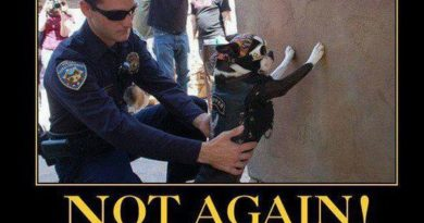 Terrierist - Dog humor