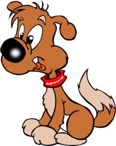 A Dog's Diary - Dog humor