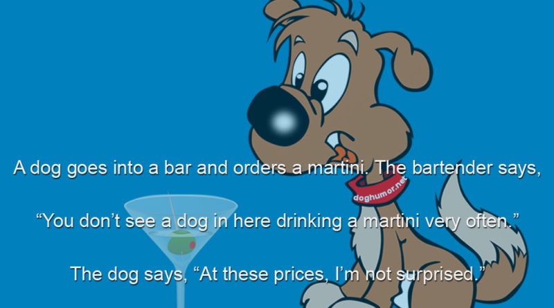 A Dog Goes Into a Bar - Dog humor