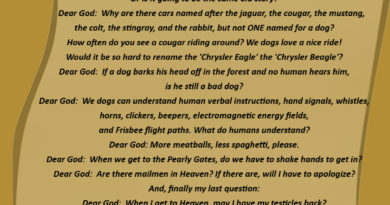 Dog's Letter To God - Dog humor