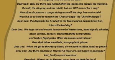 Dog's Letter To God - Dog humor