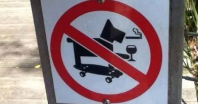 No Cool Dogs Allowed - Dog humor