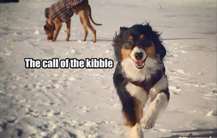 When Nature Calls - Dog humor