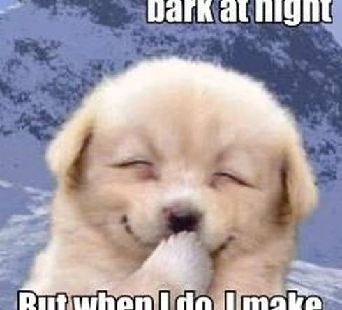 I Don't Always Bark At Night - Dog humor