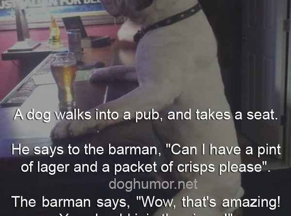 A Dog Walks Into a Pub - Dog humor