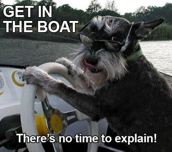Get In The Boat - Dog humor