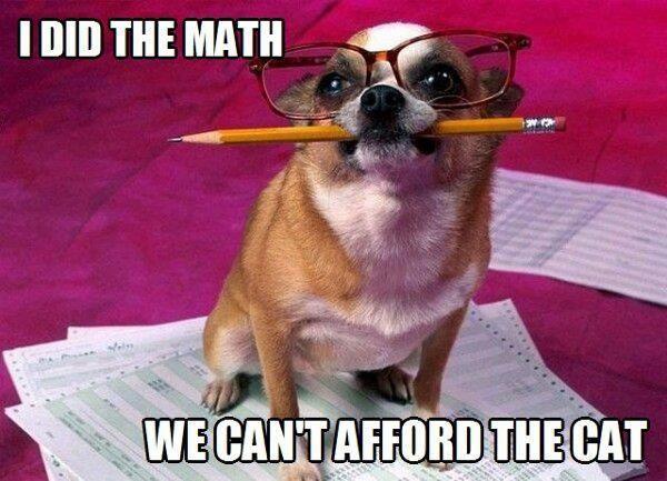 I Did The Math - Dog humor
