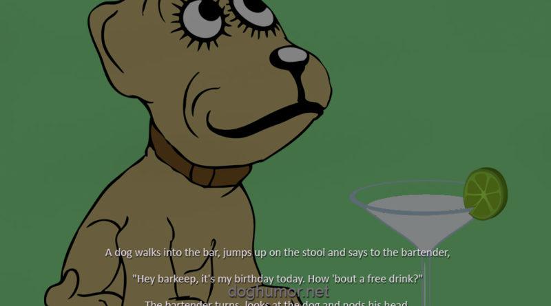 A Dog Walks Into The Bar - Dog humor