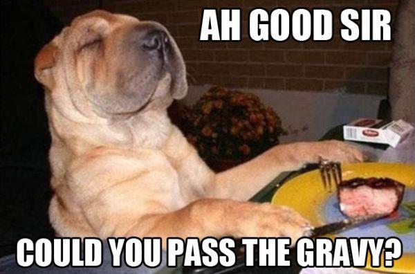 Like A Sir - Dog humor