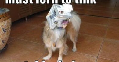 Must Learn To Think - Dog humor