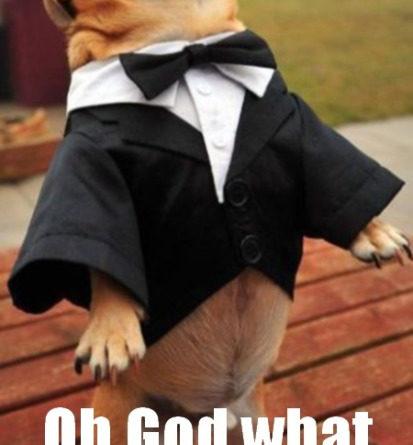 Oh God! - Dog humor