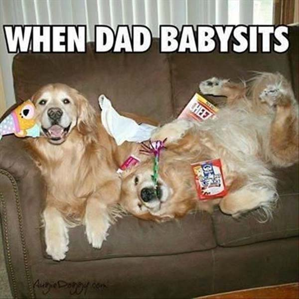 When Dad Babysits - Dog humor