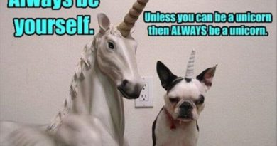 Always Be Yourself Unless... - Dog humor
