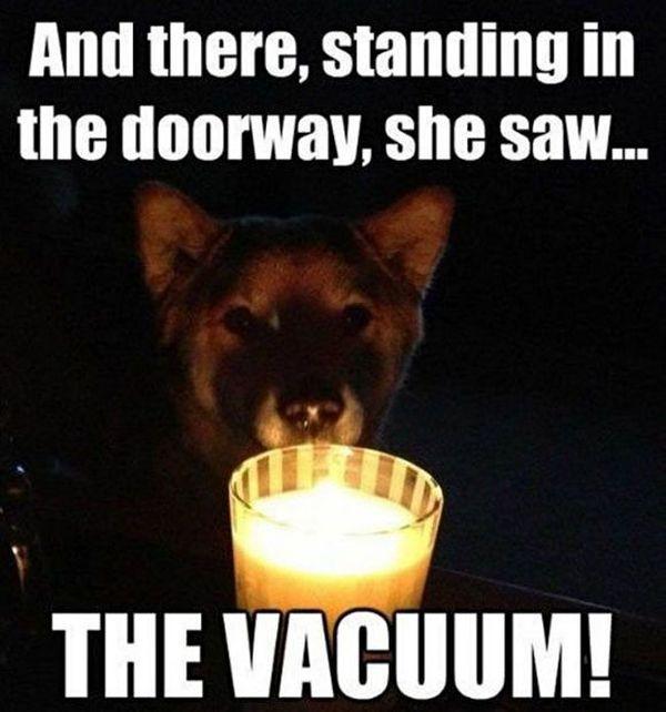 Scary Dog Story - Dog humor