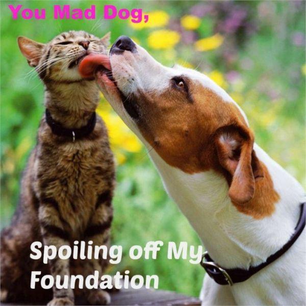 You Mad Dog? - Dog humor