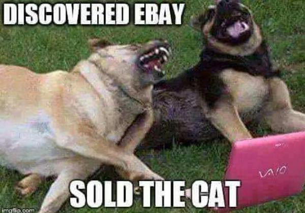Discovered Ebay - Dog humor