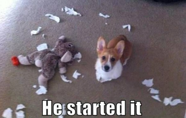 He Started It - Dog humor