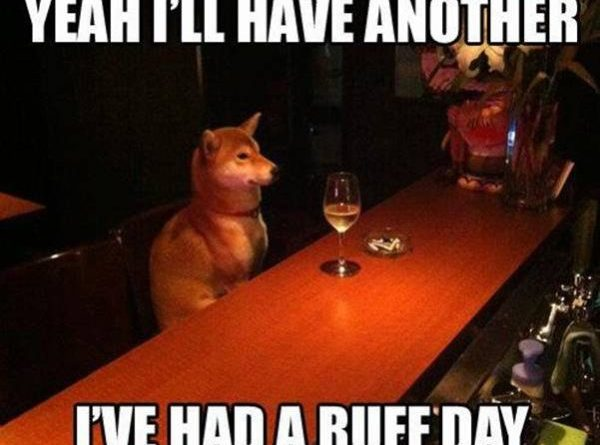 yeah I'll Have Another - Dog humor