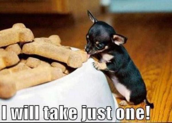 I Will Take Just One - Dog humor