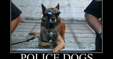 Police Dogs - Dog humor