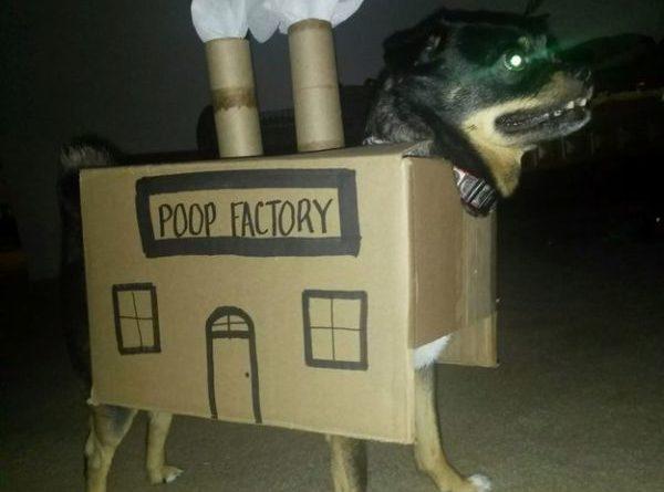 Poop Factory - Dog humor
