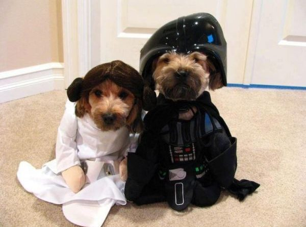 Star Wars Dogs - Dog humor