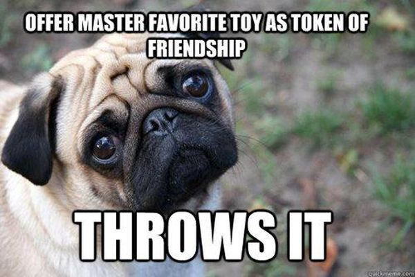 Token Of Friendship - Dog humor