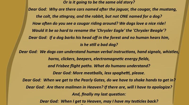 Dog s Letter To God – Dog Humor
